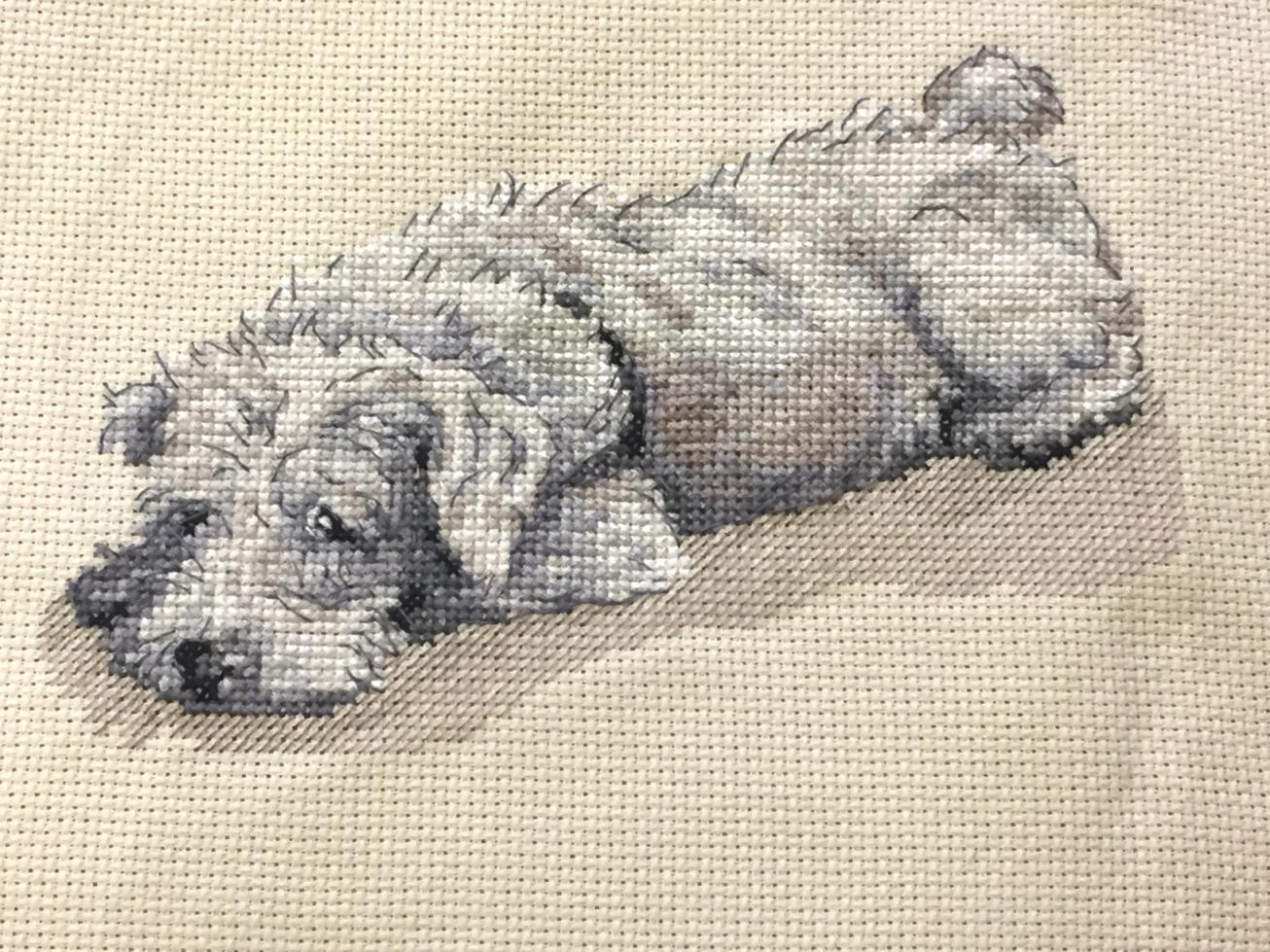 Mans best friend cross stitch kits.